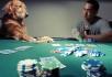 blef-poker